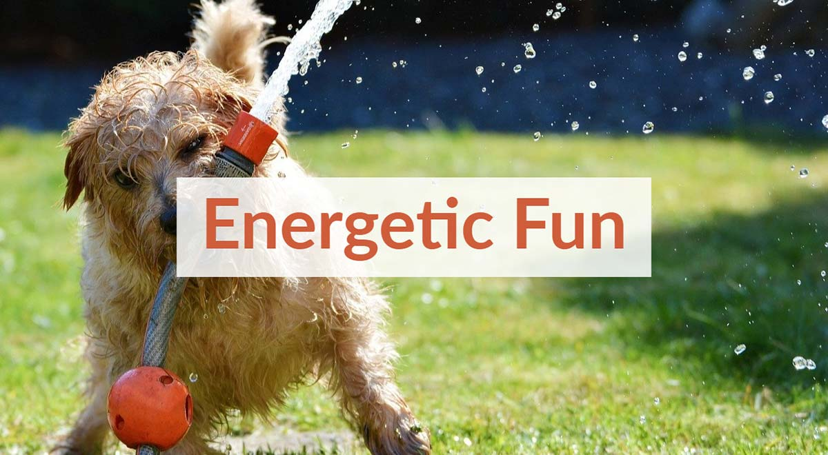 Royalty Free Energetic Fun Background Music